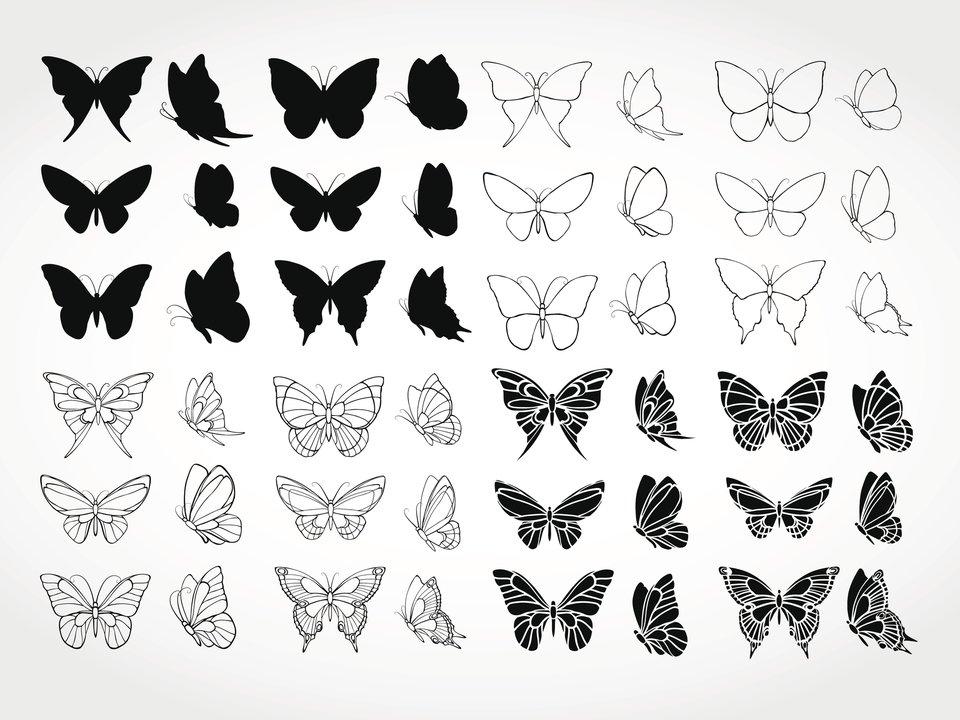 Schmetterlinge Tattoos Flowertattoos Schmetterling