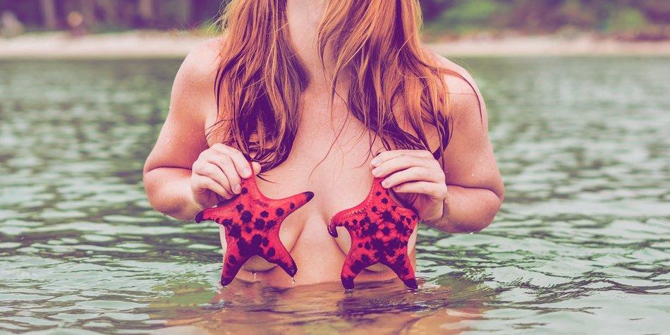 Seestern sexstellung