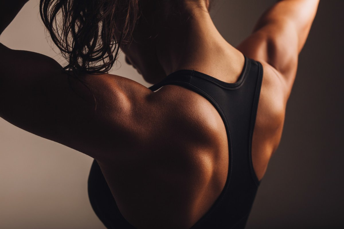 schnell fett verlieren ohne muskelabbau