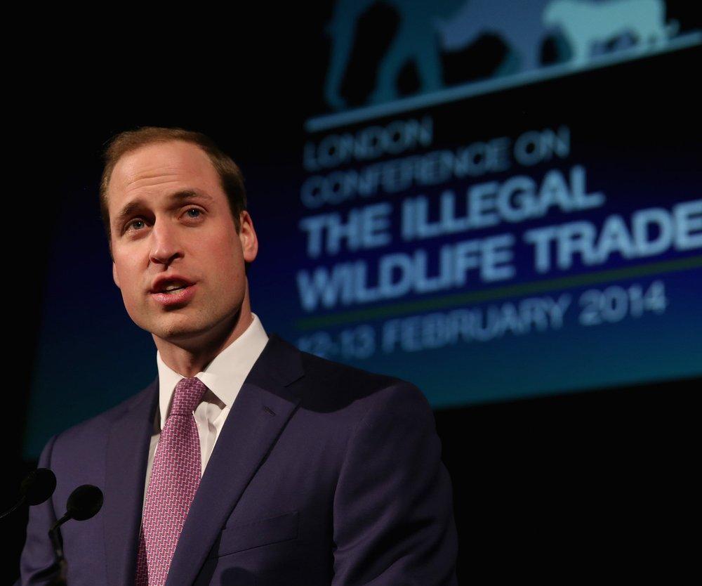 Prinz William möchte Elfenbein aus dem Buckingham Palast verbannen