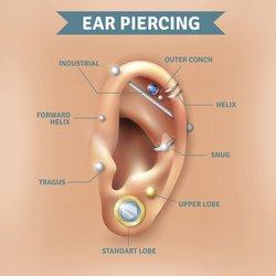 Piercing Arten Ohr