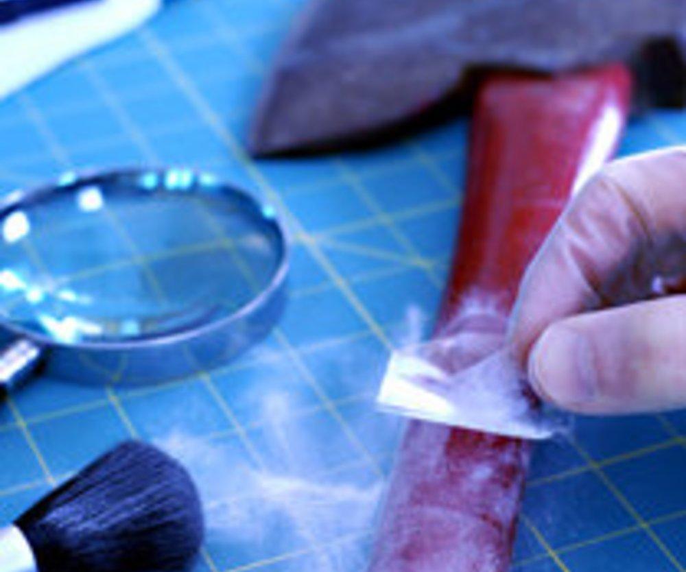 Ausbildung in der Forensik