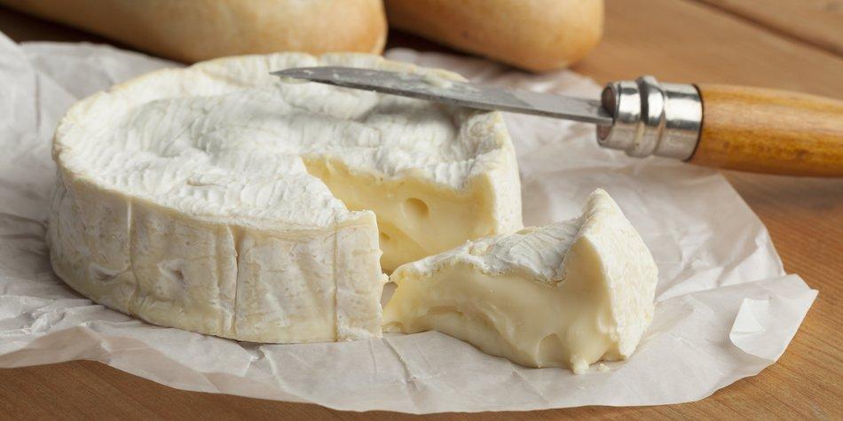 Rohmilch-Käse Rückruf wegen E. Coli-Bakterien