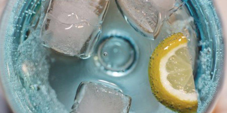 Gin Tonic Zubereitung