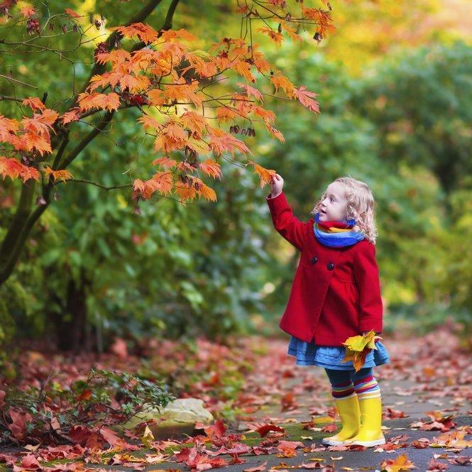 Nicht nur die bunten Blätter machen den Herbst im Kindergarten zum Erlebnis.