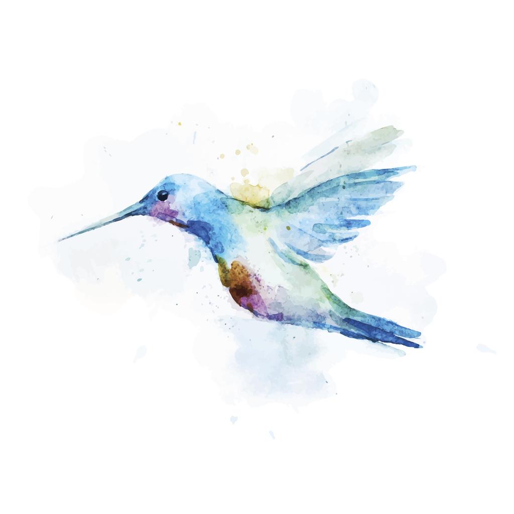 Kolibri Tattoo Bedeutung Und Bilder Zum Motiv Desired De