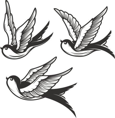 Tattoo Vorlagen Schwalben Gross Klein Schwalben 9