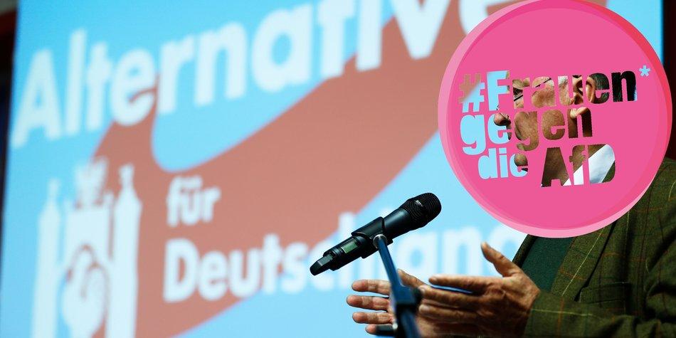 AfD Bundestagswahlen 2017