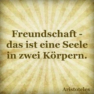 Freundschaft - das ist eine Seele in zwei Körpern.