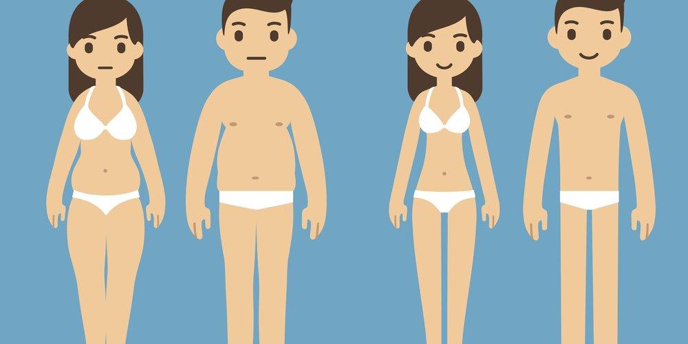 Verschiedenen Bodytypen