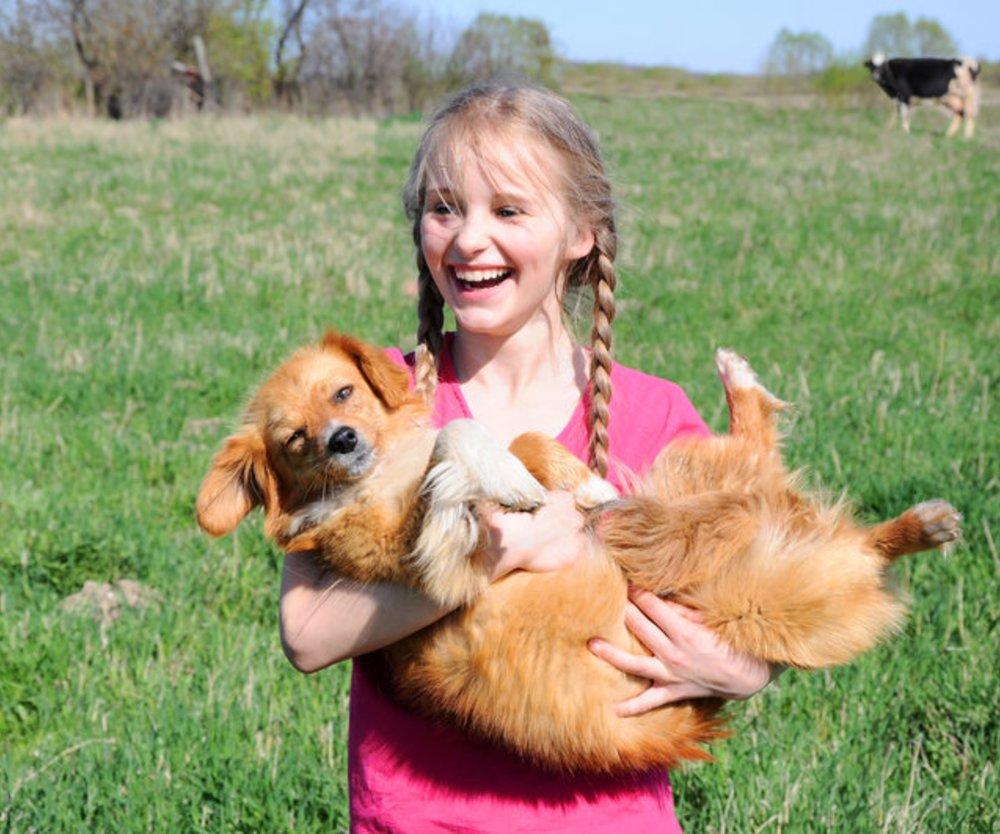 Asthma: Hunde schützen Kinder vor Asthma