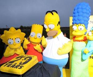 Die Simpsons heute im TV