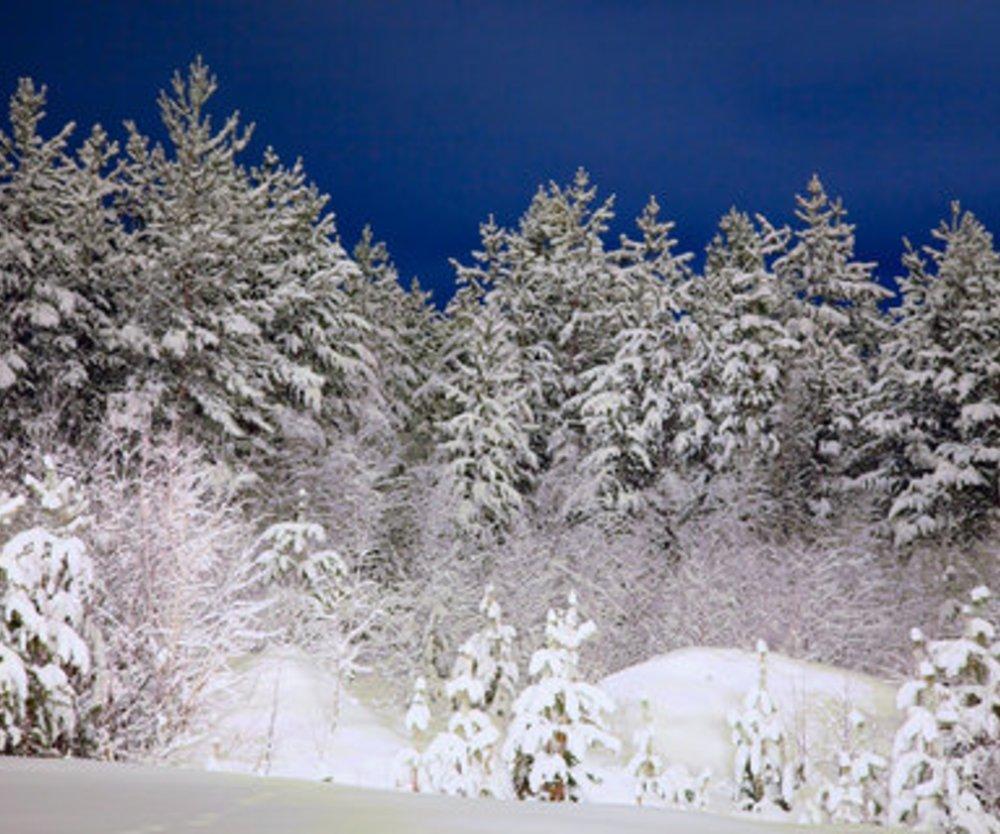 Gedichte zu Advent und Weihnachtszeit