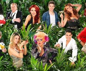 Dschungelcamp: Das sind die Luxusartikel der Stars