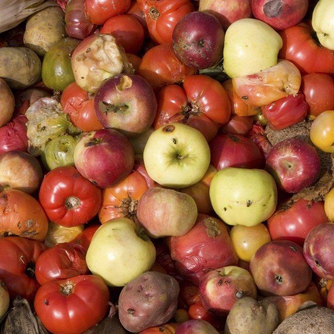 251115_News_Lebensmittel_REFRESH_iStock_duglasp