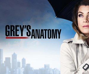 Greys Anatomy Meredith grey