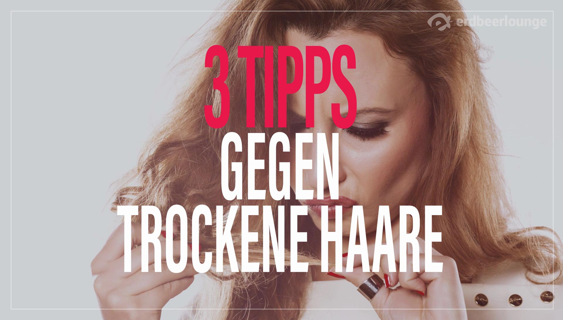 Trockene Haare Die Besten Tipps Tricks Desiredde