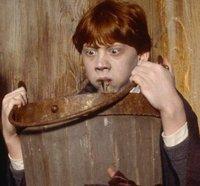 Harry Potter Trinkspiel: Bald wird dir schlecht!