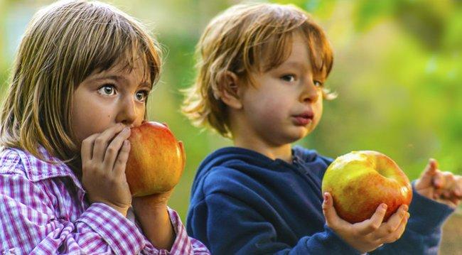 Gesunde Lebensmittel sind teuer. Diese Ernährung kann sich nicht jeder leisten. Das soll sich ändern