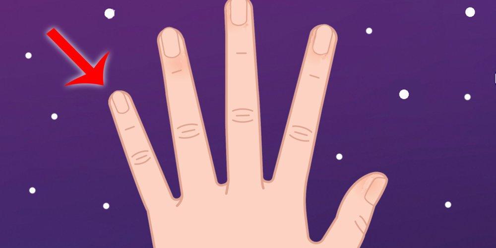 Handleser glauben, dass die Länge und Form deines kleinen Fingers viel über deinen Charakter verrät. Willst du wissen, was er über dich aussagt?
