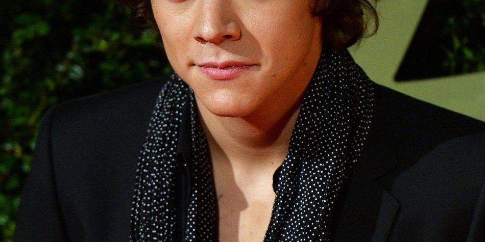 Harry Styles investiert fast 3,5 Millionen Euro in Kunst