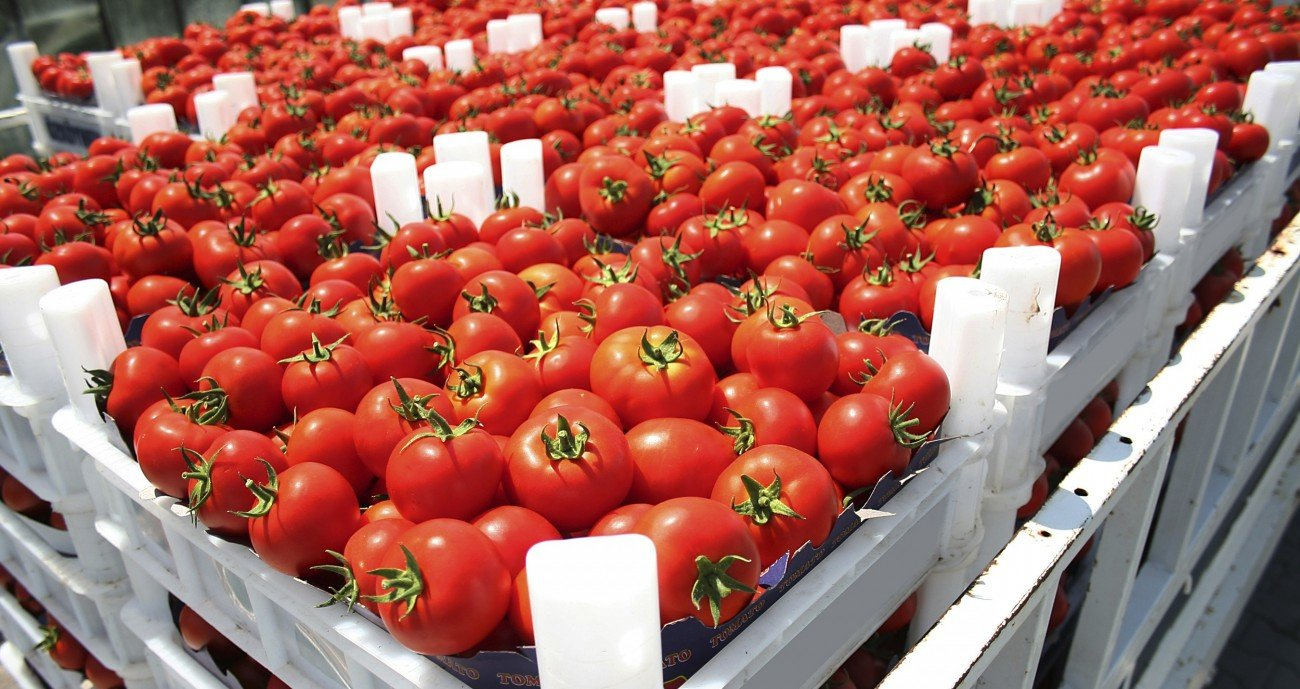 151015_Rezepte_News_Lebensmittel_Import Export_iStock_ jahmaica