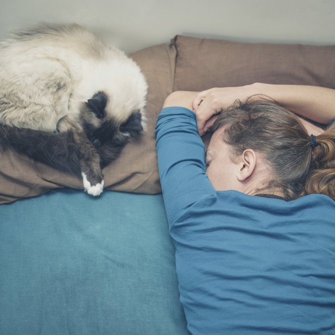 Woman sleeping in bed with cat