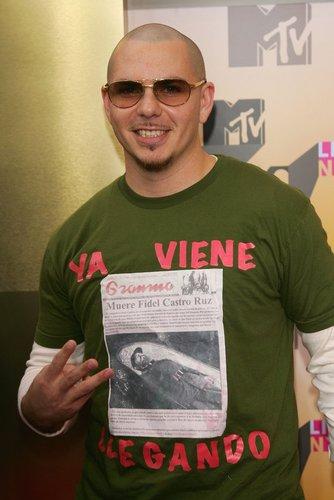 Pitbull mit witzigem Shirt