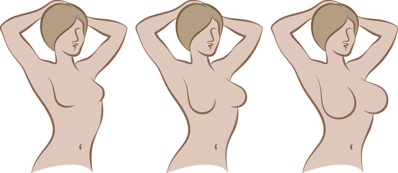 Brustgrößen