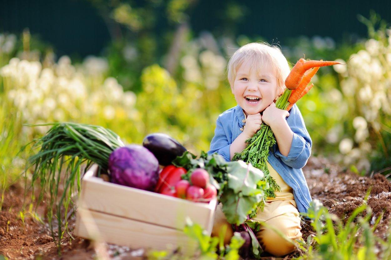 Kleiner Junge mit Gemüsekiste lebt vegan.