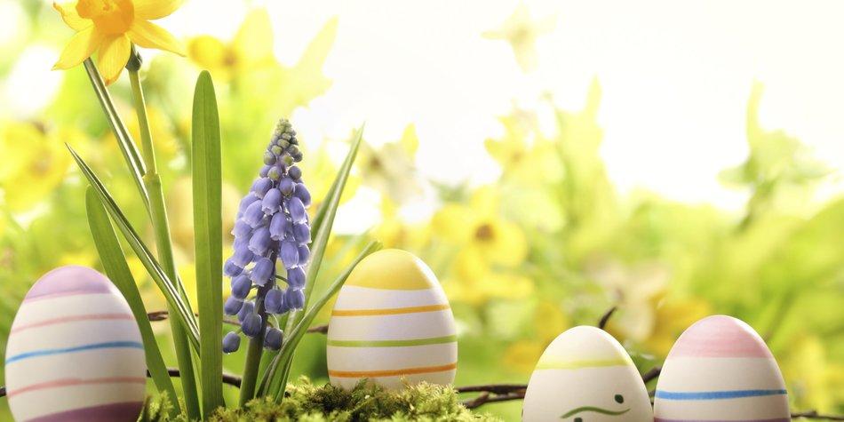Osterbilder: Fang Dir die Osterstimmung ein
