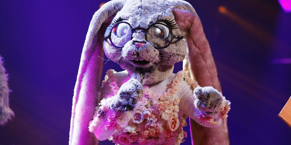 """The Masked Singer"" Hase: Alle Hinweise & Enthüllung"