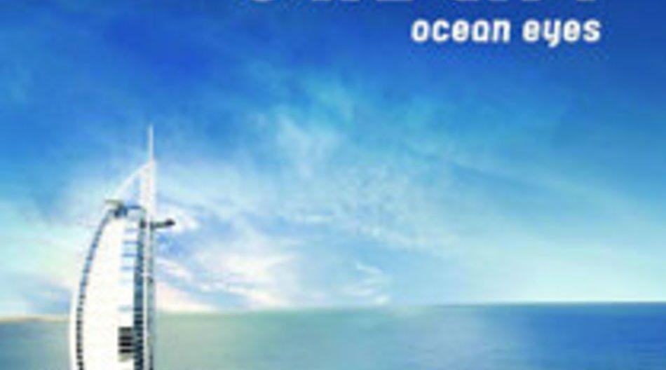 Owl City: Ocean Eyes