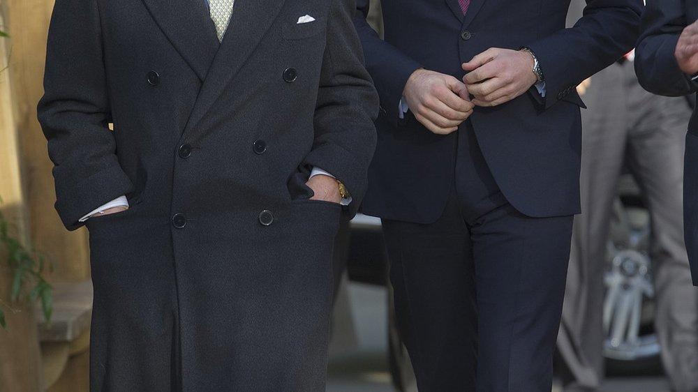 Prinz William und Prinz Charles kämpfen gegen die Wilderei