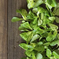 Field salad on the old wooden table top view