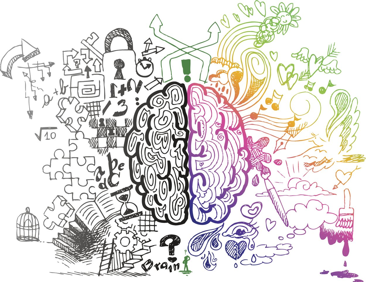 Linke vs. rechte Gehirnhälfte