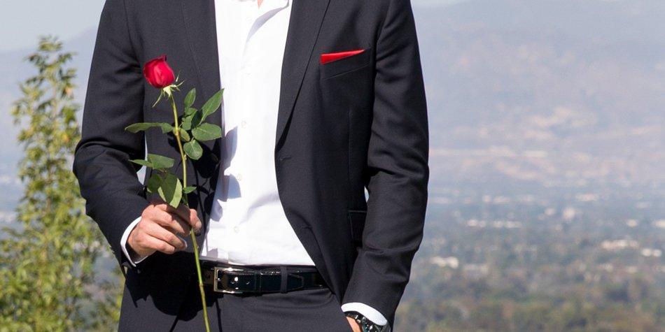 Der Bachelor: Verteilt er seine Rosen in Hollywood?