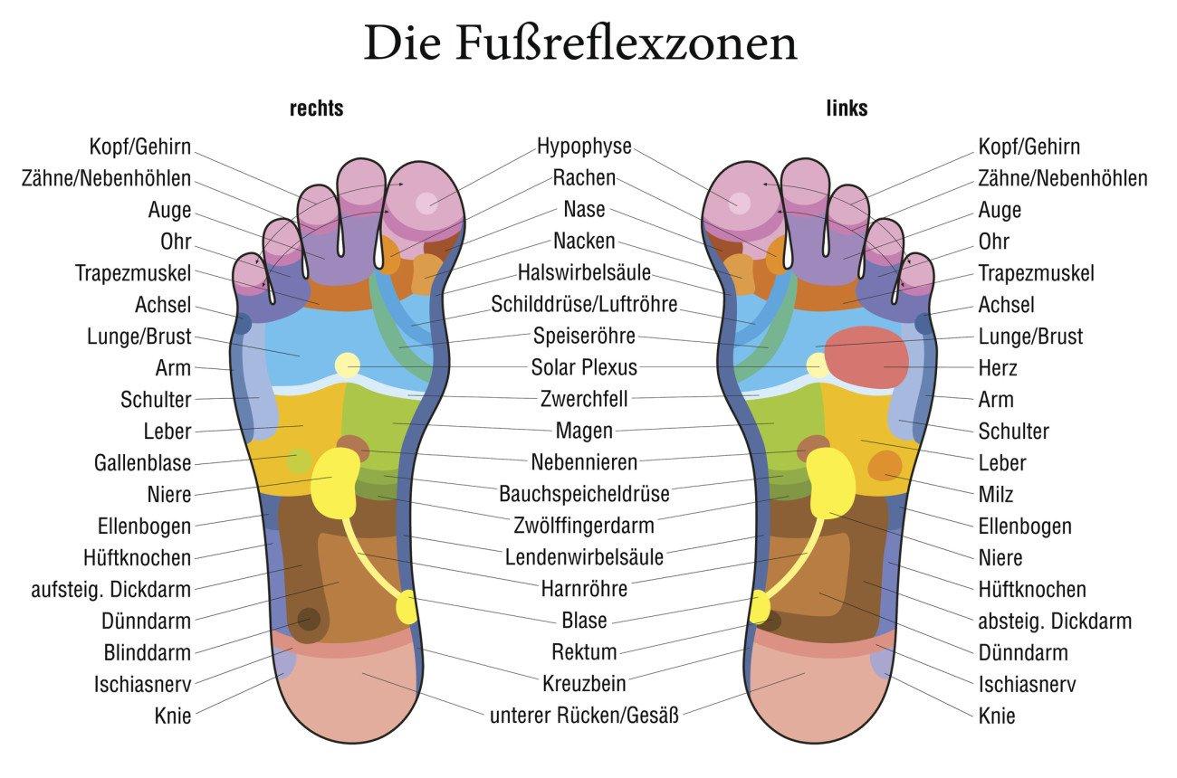 Füße Reflexzonen