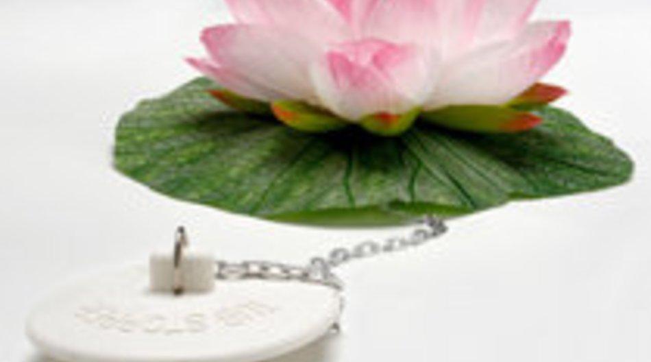 Geschenkidee: Lotus für die Wanne