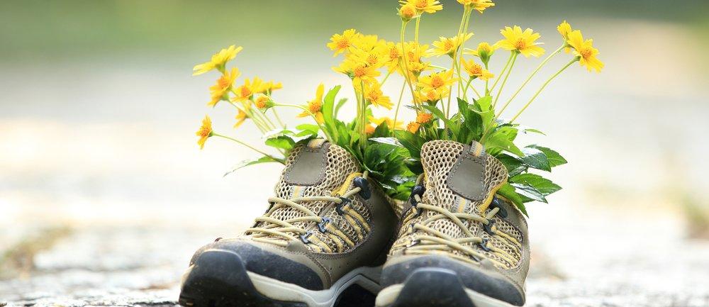 Wanderschuh-Trend mit Blumen