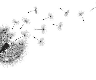 Pusteblume-Tätowierung Vorlagen