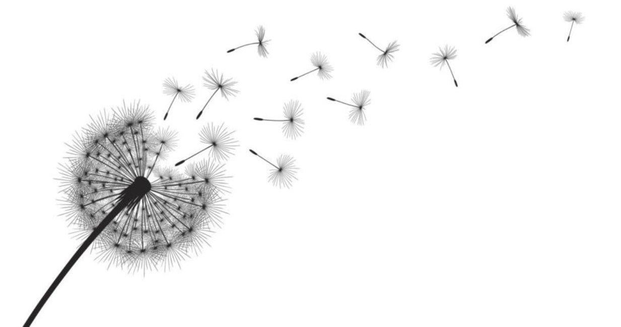 Fingerabdruck Gastebuch Vorlagen Fur Pusteblume