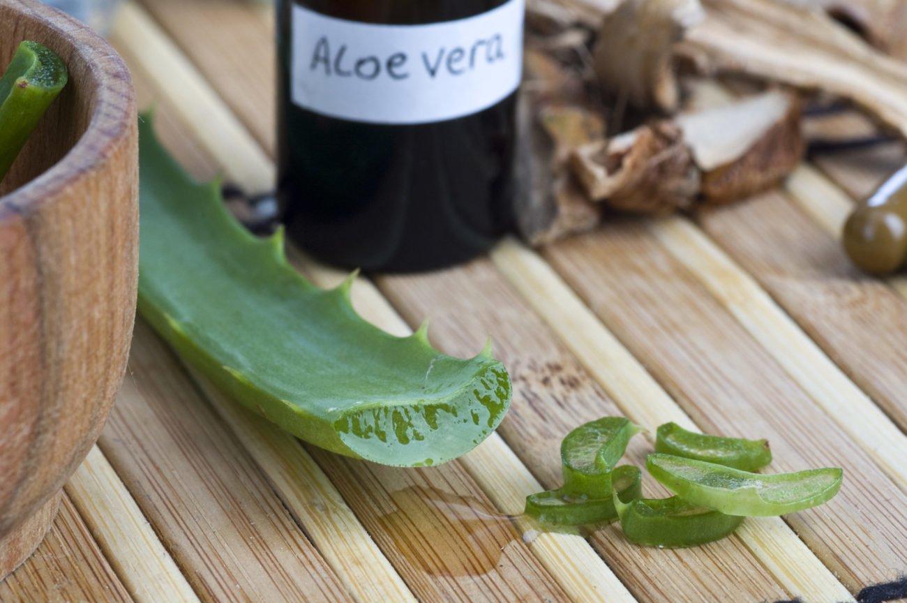 Aufgeschnittene Aloe Vera