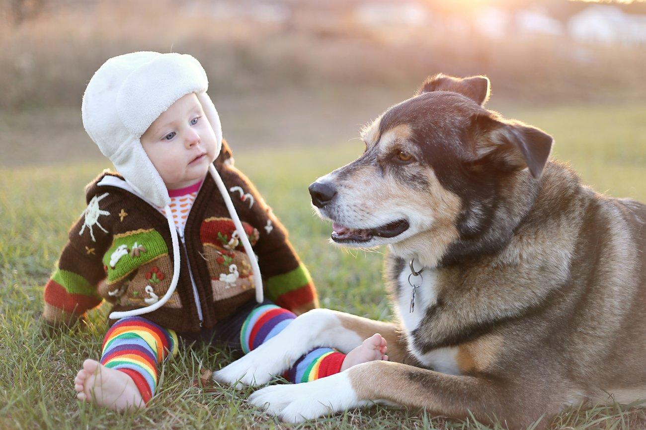 Baby und Hund sitzen im Park