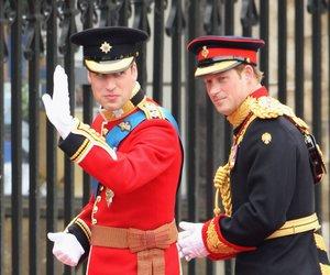 """Prinz William und Prinz Harry sind Fans der Serie """"Friends"""""""