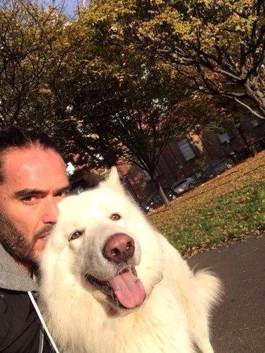 Russell Brand mit einem Schäferhund