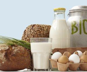 Bio Lebensmittel: Der Boom hält an!