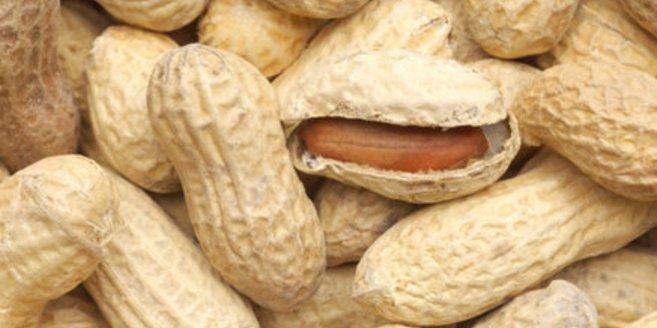 Erdnüsse In Der Schwangerschaft