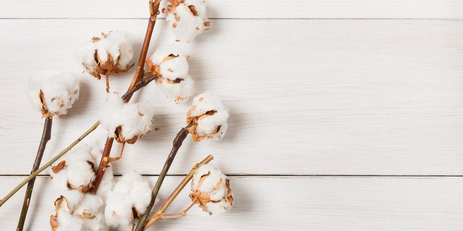 Baumwollhochzeit Geschenke Zum 2 Hochzeitstag Desiredde