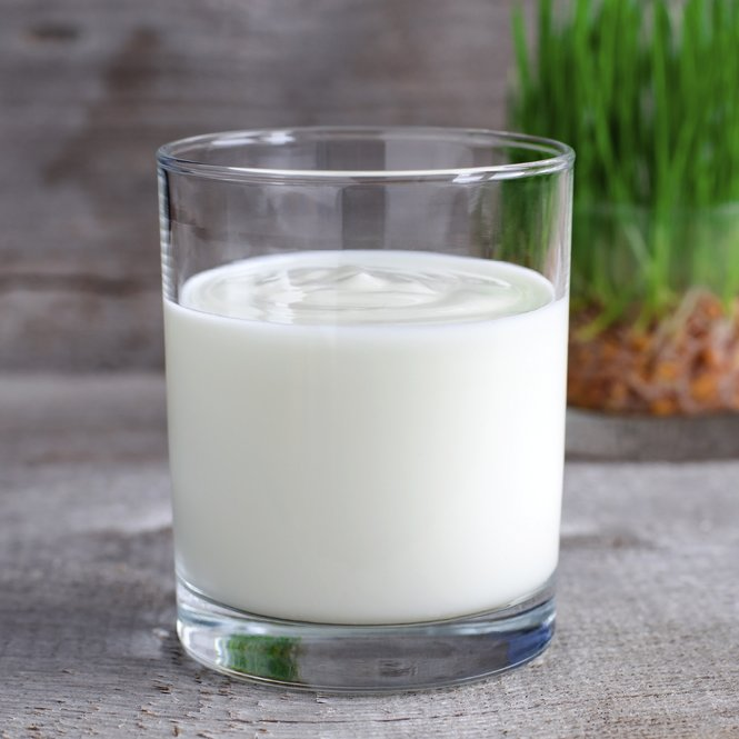 Fresh homemade yogurt in a glass